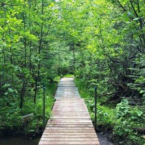 Cozzens' Creek