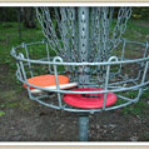 disc-basket-small